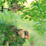 Avoid Scent Control Complacency While Scouting for Deer